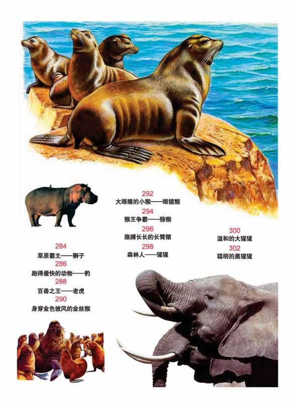 世界动物百科-龚勋 -图书-文轩网