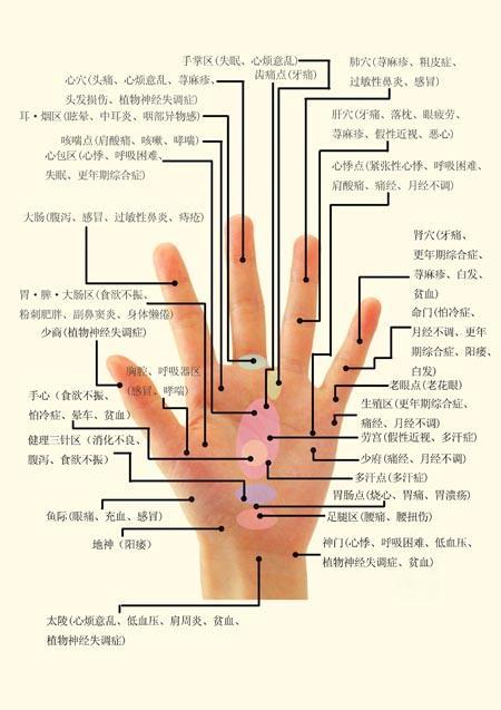 右手掌纹中医图解