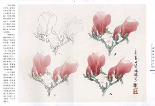 《工笔花卉设色技法》(毕彰)【简介 评价 摘要 在线