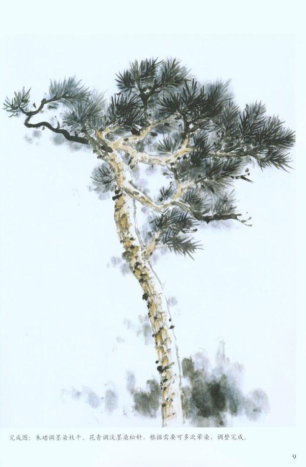 盆景 盆栽 树 松 松树 植物 600_914 竖版 竖屏